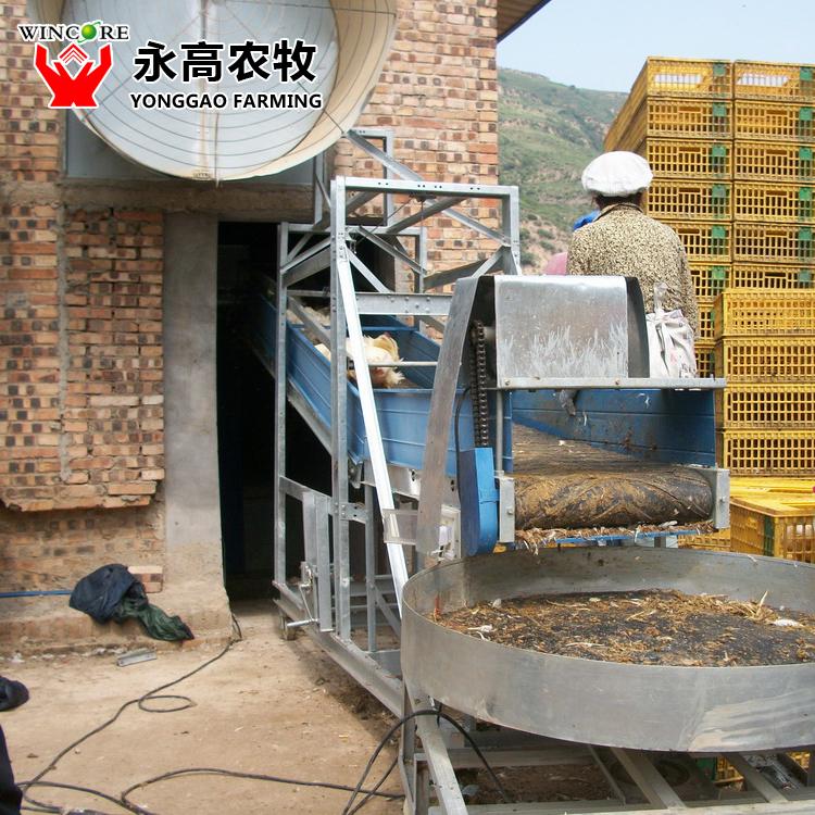 H Tier Broiler Cage_poultry Farm Design_poultry Equipment