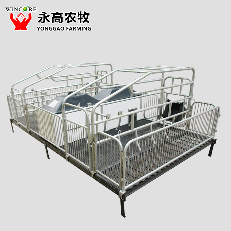 Pig Farrowing Crate