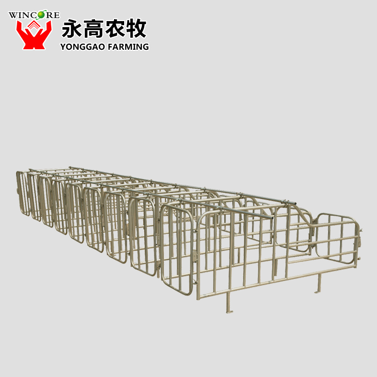 Pig Gestation Crate